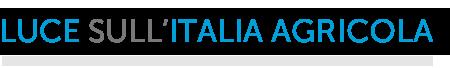 LUCE SULL'ITALIA AGRICOLA